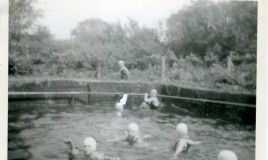 <p>Swimming in the cold waters of Glyn Malden swimming pool.