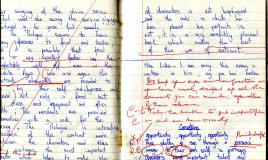 "A scan of a student's exercise book, two pages of an essay on Chaucer. There is an apology addressed to Miss Lickes for using pen to write the essay and corrections and suggestions in red pen marked on both pages. There is a separate ""Corrections"" section. The scan is not complete, words are cut off on the left of the left hand page."