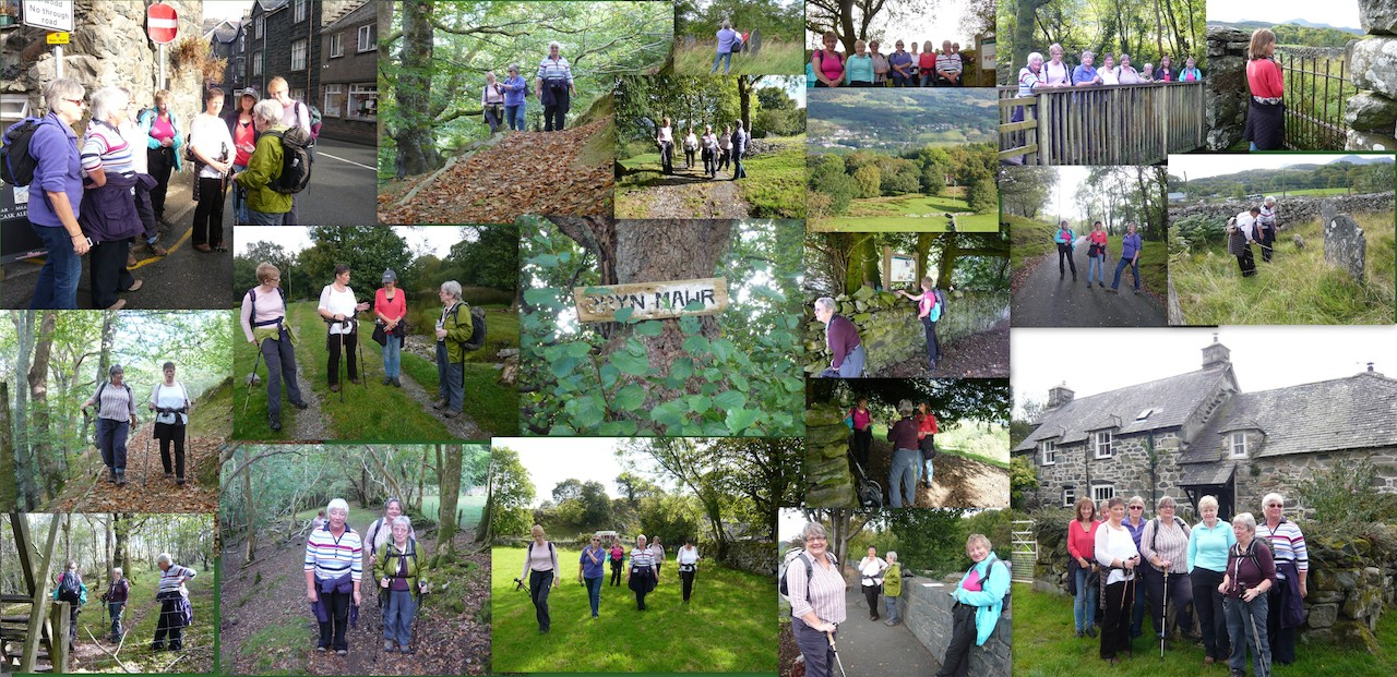 Collage of Quaker Walk